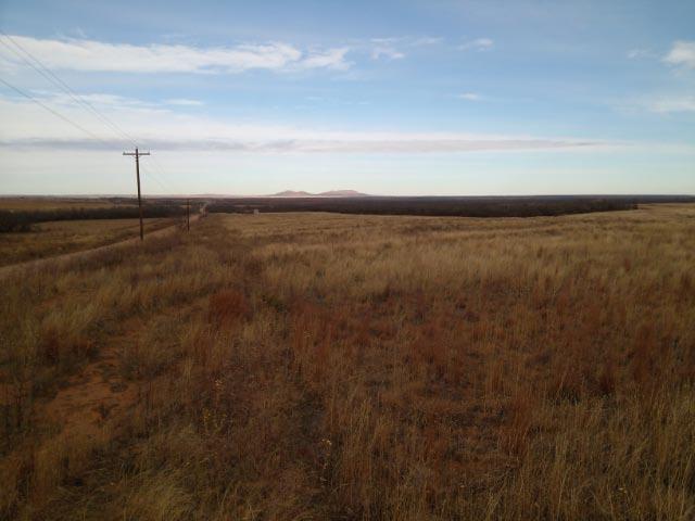 Fisher County Farmland Nolan Farms for Sale Texas Hunting